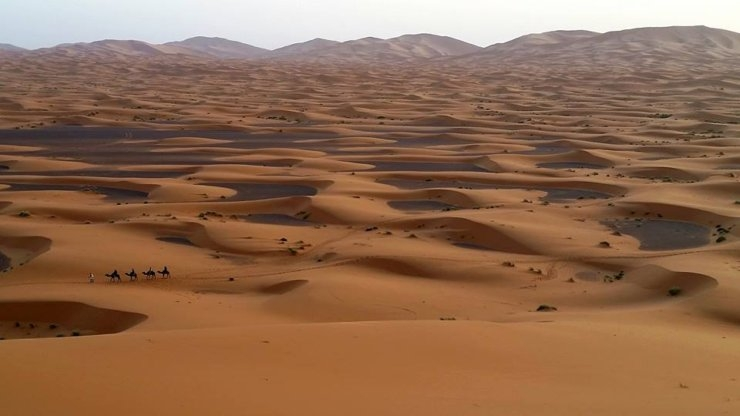 Desert Tours :Marrakesh-Sahara Desert-Marrakesh 4 days
